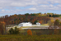 Bridle Hill Farm